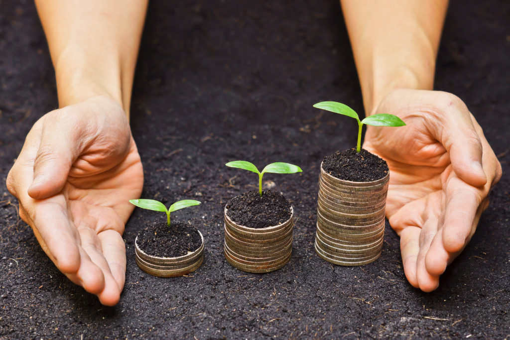 hands holding tress growing on coins / csr / sustainable development / economic growth